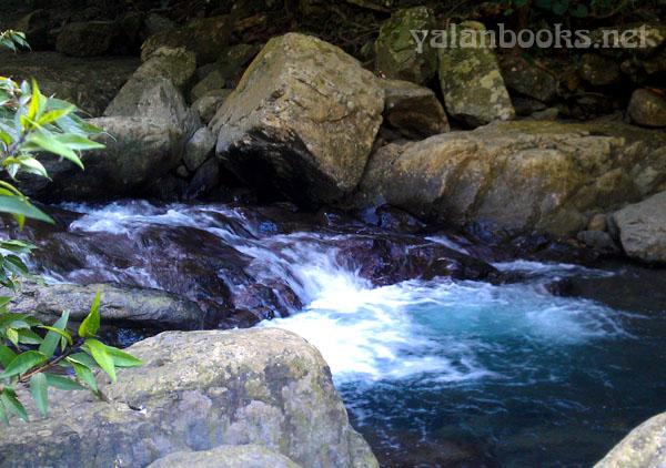 Taiwan  Manyueyuan Forest Waterfall View Romanticism  Photography 台湾 满月圆森林瀑布 风光摄影 浪漫主义 Yalan雅岚 黑摄会